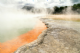 Trafalgar 4 Day Rotorua Discovery Guided Tour