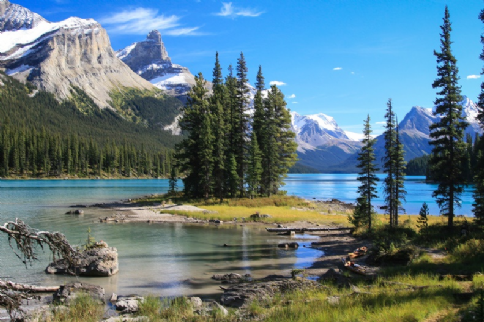 Insight Vacations 21 Day Luxury Canadian Rockies and the Pacific Northwest Adventure with Cruise Inside Cabin